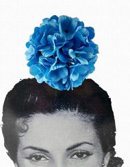 tienda hortensia azul