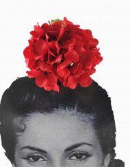 tienda hortensia roja
